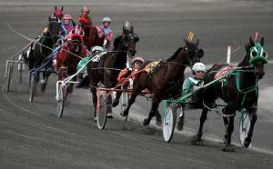 Plainridge Park Harness Racing