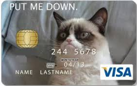 Credit card Cat